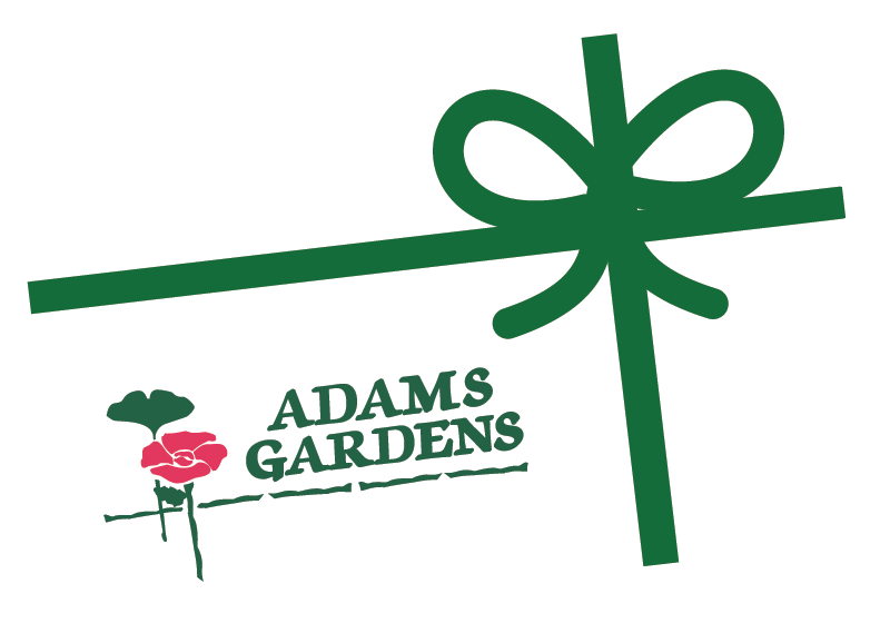 Adams Garden Gift Card