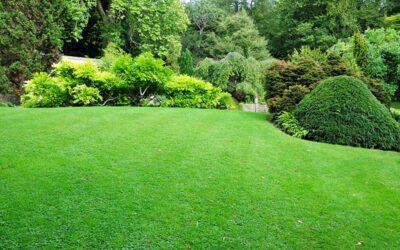 Lawn & Garden Winterization